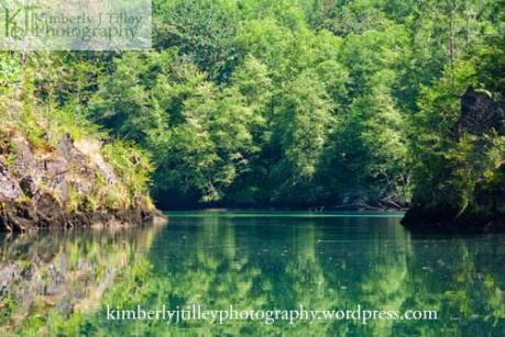 spring time at a lake